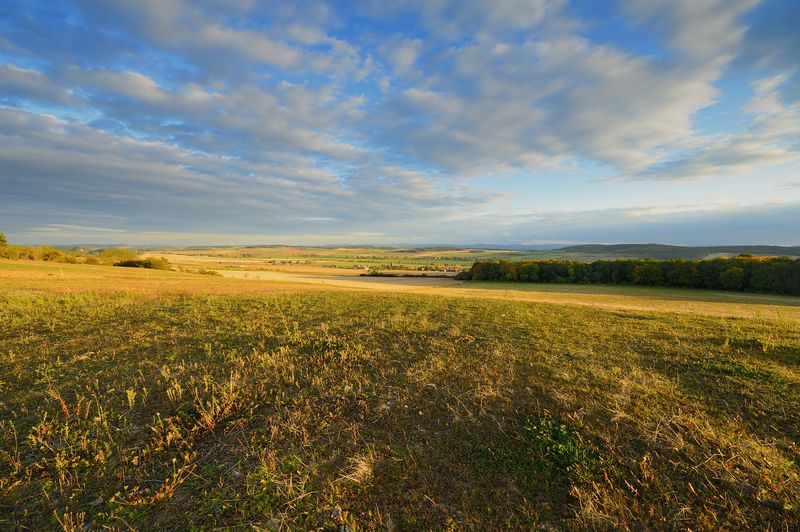 A landscape near Ilmenau Sky And Clouds Thuringia Trees Agriculture Beauty In Nature Cloud - Sky Day Evening Evening Sun Field Germany Grass Harvested Field Ilmenau Landscape Nature No People Outdoors Rural Scene Scenics Sky Tranquil Scene Tranquility Wheatfield Wide Angle