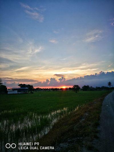Throwback 4/12/2016 sunset