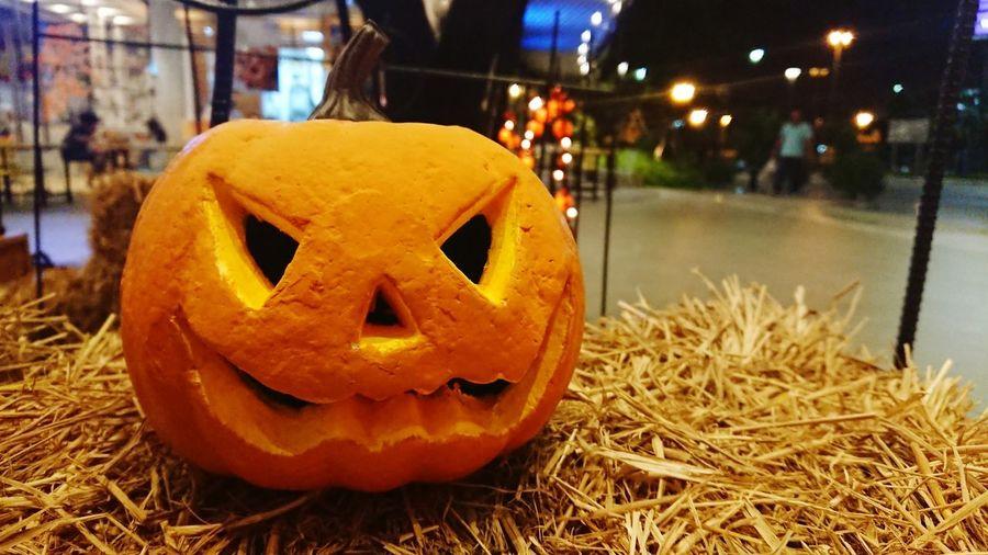 Close-up of pumpkin on pumpkins at night