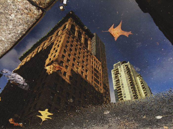IPhoneography VSCO Cam Procamera VSCO Vscocam New York EyeEm Best Shots Fineart NYC