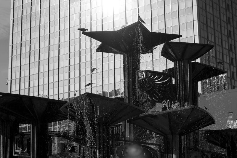 Berlin Birds Daily Life Fountain Glass - Material Photography In Motion Reflection Sunlight