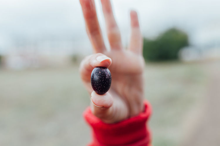 Cropped hand holding black olive outdoors