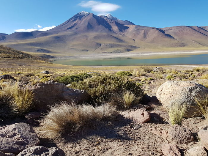 Lagunas altiplanicas Atacama Mountain Lagoon Laguna Miñique Chile Lake Mountain Sand Dune Mountain Desert Clear Sky Sand Arid Climate Mountain Peak Volcanic Landscape Extreme Terrain Sky Countryside Lakeshore Lakeside Rock Formation Geology Volcano Eroded