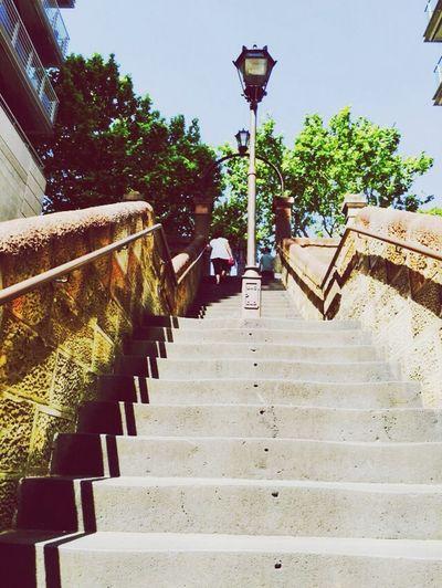 Steps to the gardens Botanical Gardens Sydney Opera House