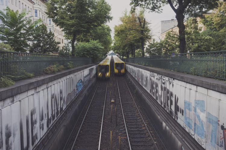 Blurred motion of trains amidst trees in city