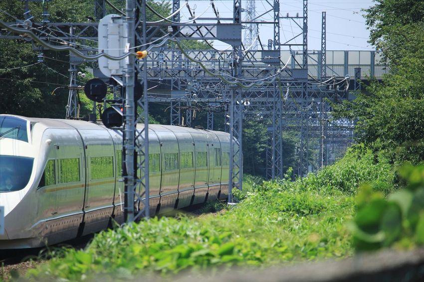 小田原に向かうやつ 小田急 電車 Train Greenhouse Electricity