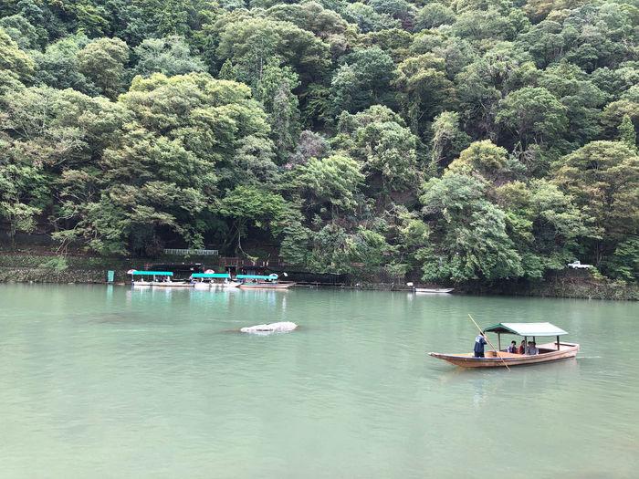 Nautical Vessel Transportation Tranquil Scene Forest Outdoors Scenics - Nature Tourist Destination