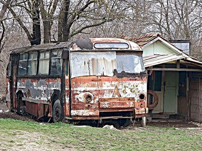 Buss Taking Photos Old