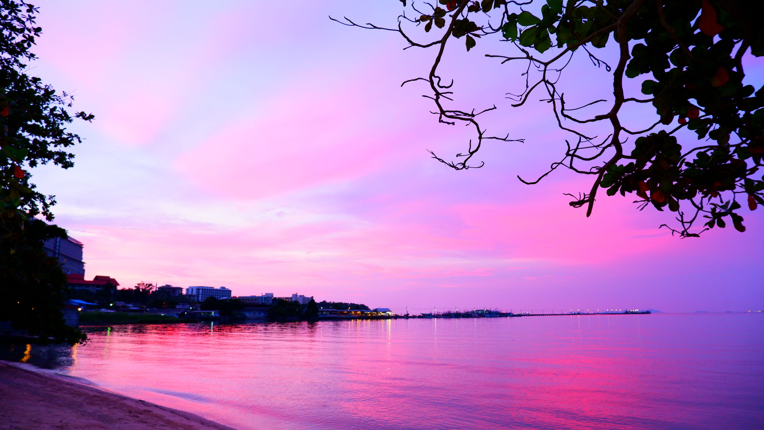 water, sky, tree, beauty in nature, nature, sunset, cloud, scenics - nature, plant, sea, dusk, tranquility, evening, pink, reflection, tranquil scene, no people, silhouette, travel destinations, outdoors, multi colored, architecture, idyllic, landscape, beach, city, land, travel, environment, magenta