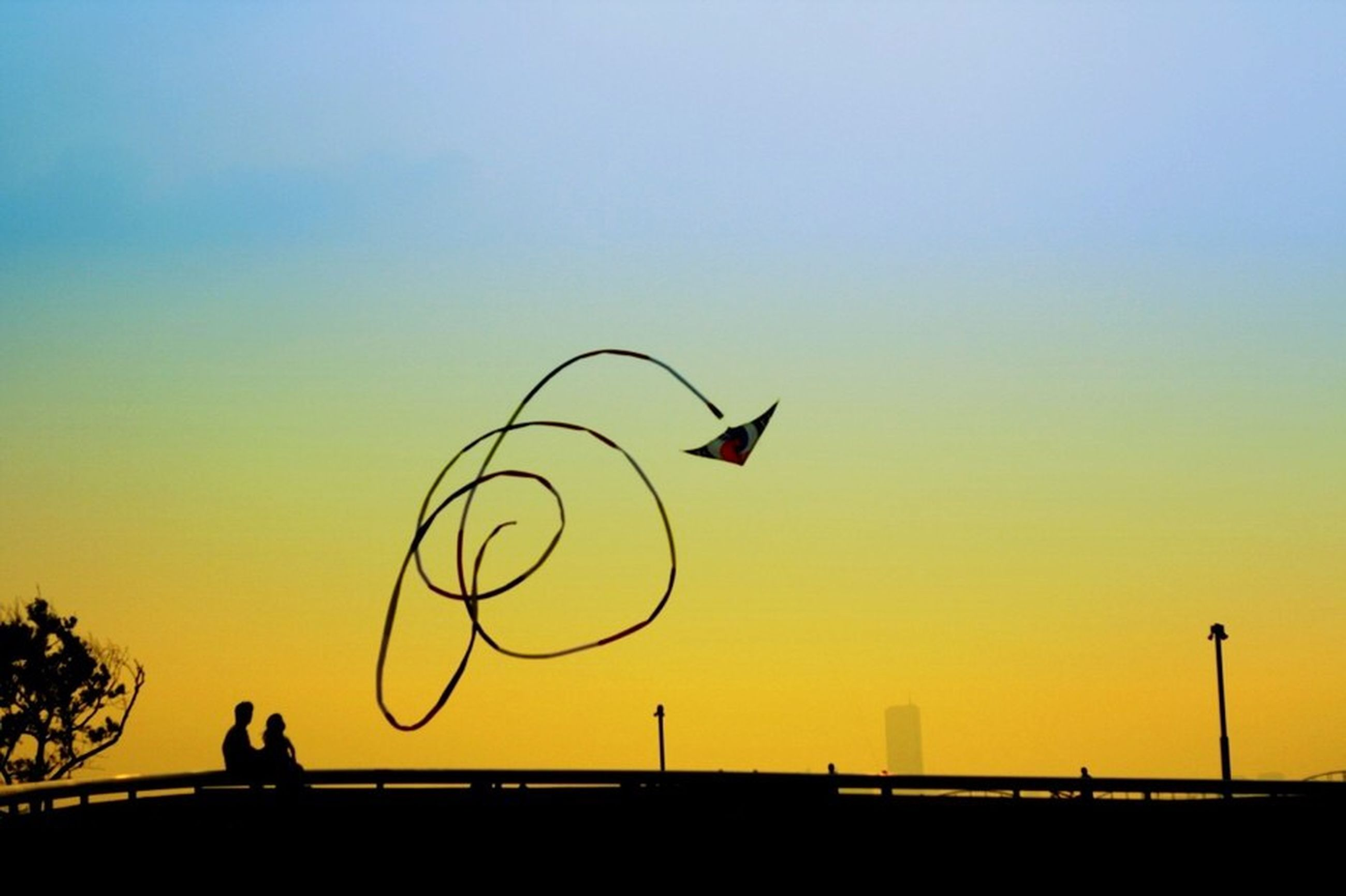 silhouette, sunset, clear sky, copy space, flying, transportation, mid-air, low angle view, bird, sky, orange color, animals in the wild, yellow, mode of transport, bicycle, nature, outdoors, animal themes