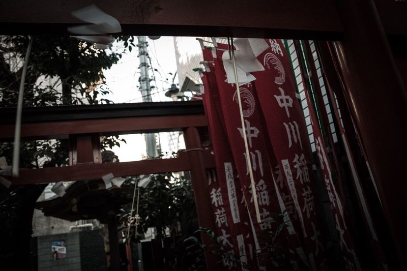 Asian Culture Japanese  Japan Darkness And Light Light And Shadow EyeEm Best Shots Check This Out Shrine Street Enjoying Life