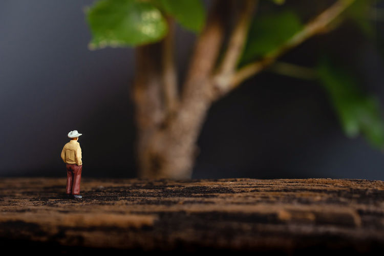 Farming or Ecology Concept. Miniature Senior Famer Looking at the Giant Tree Farming Farmer Agriculture Garden Gardening Miniature Figure Senior Elderly Tree Giant BIG Huge Ecology Earth Growth Expansion Extension Development Biology Organic People Green person Hat Small Model Natural Lifestyle Man Nature Rural Plant Country Countryside Agricultural Plantation Farm Concept Outdoor Land Produce Day Copy Space Photo Wooden Men Standing American