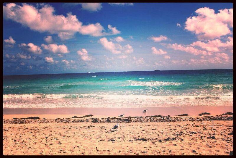 Sea Hello World Enjoying Life Hi!