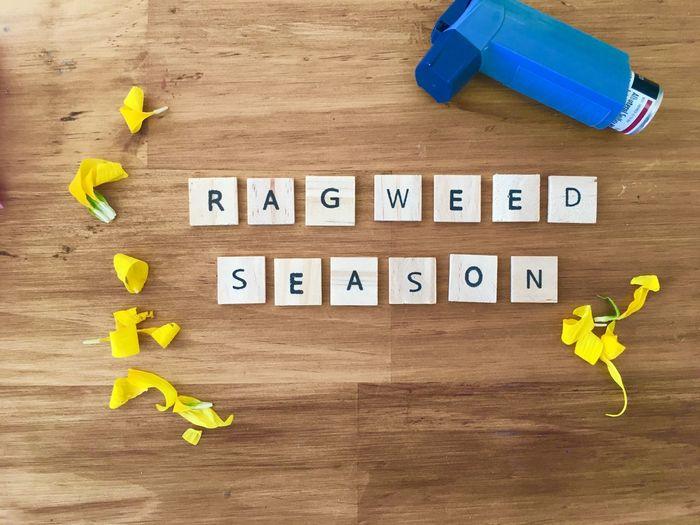 RAGWEED SEASON,