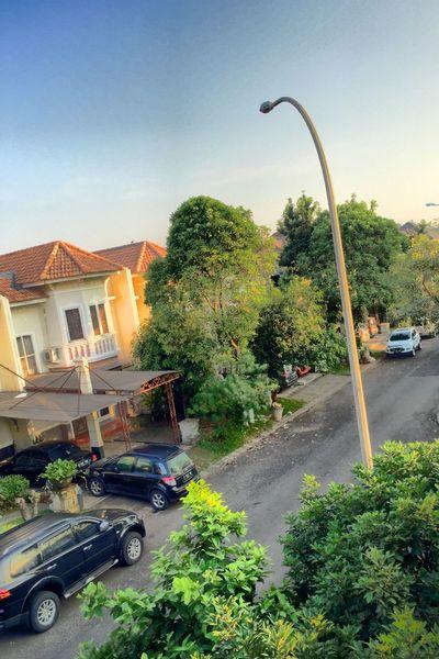 My Neighborhood Morning Sunshine Green Iphonesia IPhoneography Iphone6