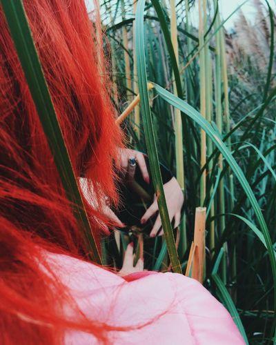 Portal Organsinsleep Laurenluck Redhead Nature Odd Mothernature Hands Details Paranormal Goddess Colors Woman Supernatural 35mm Botanical Creepy Witch Flora