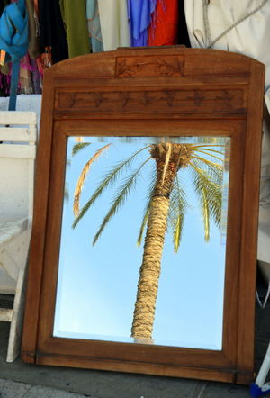 EyeEm Nature Lover France Marseille Mirror Palm Tree Reflection Day Eye Em Travel Indoors  Olefingirl Real People