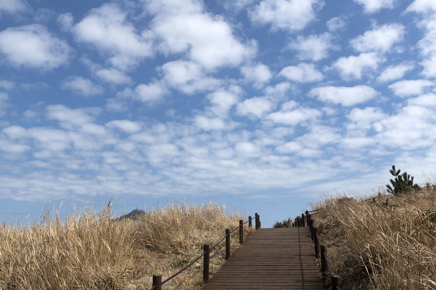 cloud and sky at Somaemuldo Island in Tongyeong, Gyeongnam, South Korea Cloud Nature's Beauty Nikon D850 Sky And Clouds Tongyeong Tranquility Beauty Of Nature Bright Day Cloud And Sky D850 Outdoor Outdoor Photography Outdoors Peaceful Day Peaceful Nature Somaemuldo Tranquil Scene