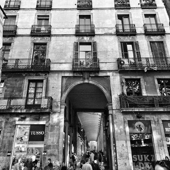 La rambla. Barcelona en blanco y negro Igerscatalunya Igersbarcelona IgersVenezuela_byn Barcelona catalunya bcn blackandwhite insta_bwgramers instapro_ve instashot_ve instabyn_ve instapic photooftheday