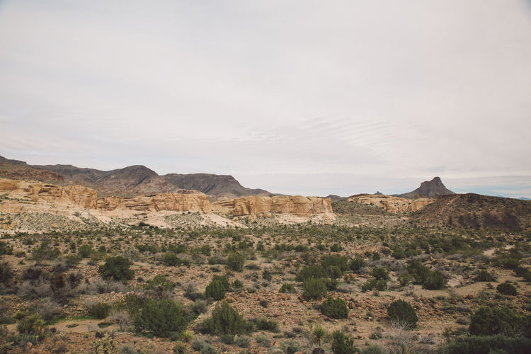 Arid Climate Arid Landscape Arizona Beauty In Nature Day Desert Geology History Landscape Mountain Nature No People Non-urban Scene Outdoors Physical Geography Road Roadtrip Rock - Object Rock Formation Route 66 Route66 Scenics Sky Tranquil Scene Tranquility
