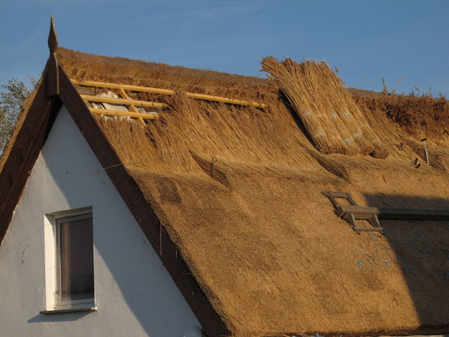 Architecture Building Exterior Built Structure Day House Low Angle View No People Outdoors Reet Reetdach Roof Sky Thatched House Thatched Roof Tiled Roof