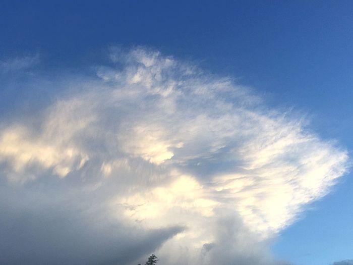 Las bellas nubes haciendo formas y colores. Los Cielos De Madrid