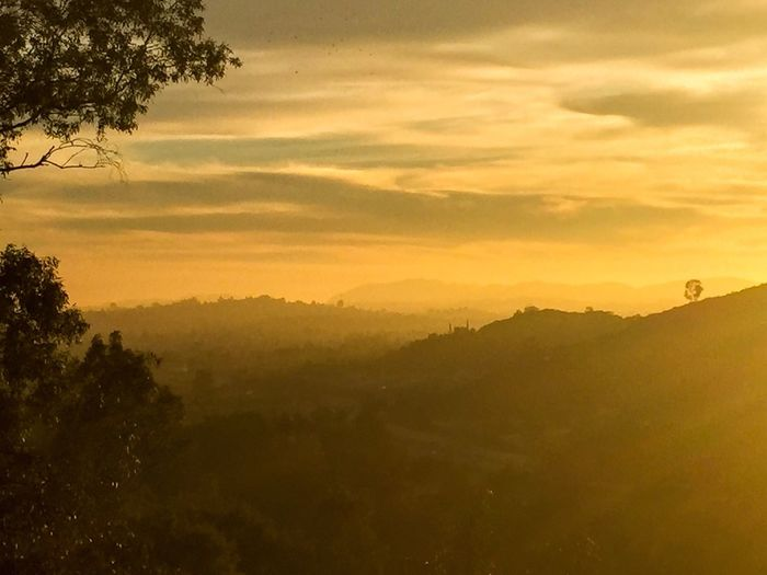 Golden Vistas Melancholic Landscapes Nature