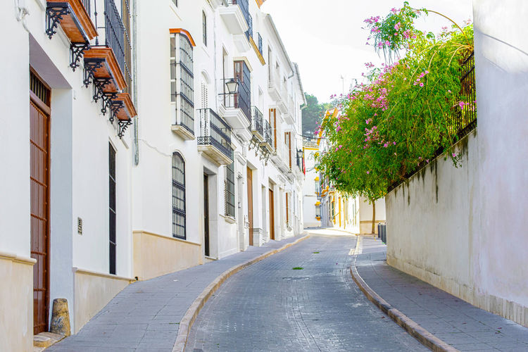 Beautiful Street in Estepa, province of Seville. Charming white village in Andalusia. Southern Spain. Picturesque travel destination on Spain. Estepa Sevilla Estepa SPAIN Seville Tourism White Villages Sun Sky Europe Cityscape Andalusia Andalusian Architecture City Town Village Andalucía Travel Travel Destinations Blue Architecture Tower Summer Outdoors European  Tourist Mediterranean  Traveler Beautiful Province Street Spanish Traditional Destination Vacations Landmark