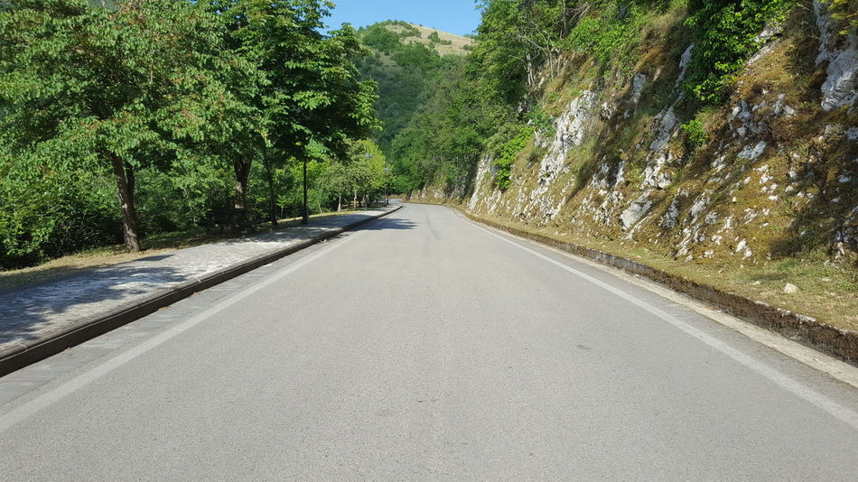 Street In The Wood Nature Outdoor Photography Mountain The Way Forward Way Tree Road Italy