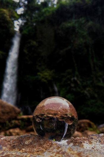 Water Fall In Crystal Ball Water Waterfall Waterfalls Crystal Crystal Ball Clear Tree Nature Forest Outdoors No People Beauty In Nature Scenics