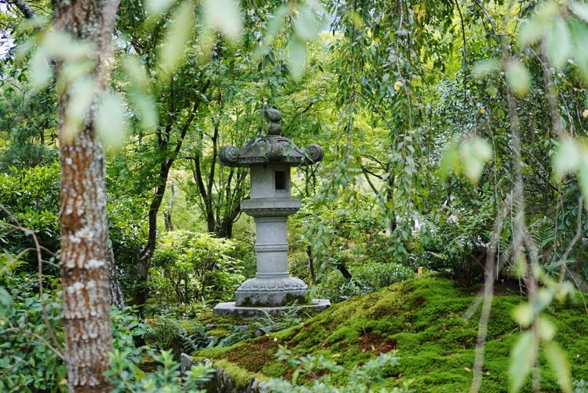 Meditating Praying Peace And Love Enjoying The View Green Relaxing Time Beautiful Relaxing Kyoto Japan
