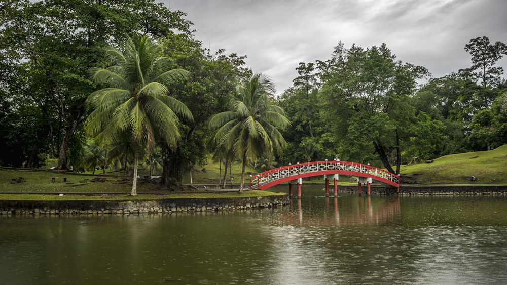 Red bridge and the rain is start to fall. Architecture Building Landscape Outdoors Park Public Park Trees Bridge Red Bridge Dramatic Sky Water Pond Rain City Park Park - Man Made Space Recreational Park Reflections In The Water Red Relaxing Moments Relaxing
