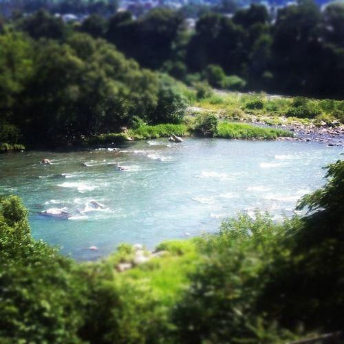 線路沿いを走る川がめっちゃキレイ