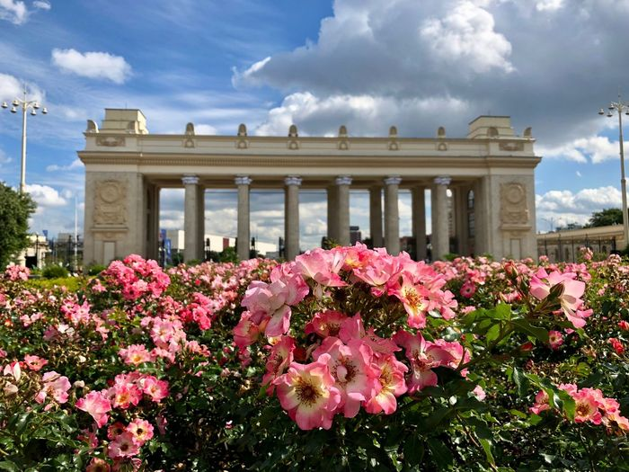 Flower Bed Gate Gorky Park Moscow Architectural Column Architecture Beauty In Nature Building Exterior Built Structure City Gate Flower Flowering Plant Growth History Nature No People Outdoors Park Gorkogo Pink Color Pink Flower Plant Rosé Vulnerability