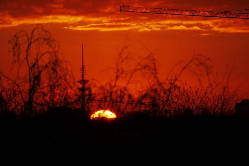 Panasonic DMC-G3   F/5,6   1/800 sek   ISO-160   200 mm EyeEmNewHere Sunset Welcome To Black BYOPaper!
