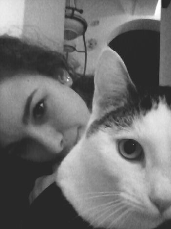 She Is My Life  Aninallovers Animals Cat Lovers Cat