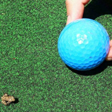 Tiny Frog Golfball Ohio, USA