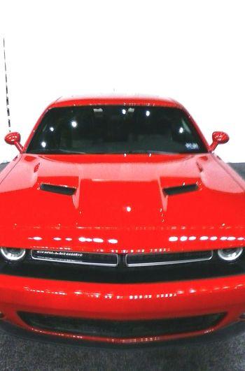 International Auto Show. Testosterone Car Porn CaR Fun! Dodge Challenger Bad 2 The Bone Enjoyable Day