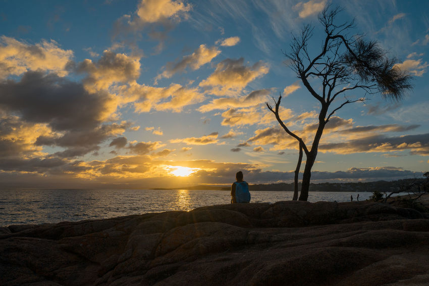 Watching the sunset in Freycinet National Park. Coles Bay Australia Bare Tree Beach Beauty In Nature Cloud - Sky Day Freycinet Freycinet National Park Horizon Over Water Nature One Person Outdoors People Real People Scenics Sea Silhouette Sitting Sky Sunset Tasmania Tranquil Scene Tranquility Tree Water