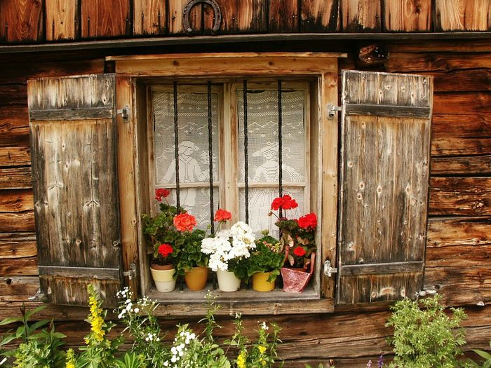 Window With Flowers Window With Geranium Window Window Display Windows_aroundtheworld Windows And Doors Wooden House Wooden Building What's On The Roll Embrace Urban Life Enjoy The New Normal Art Is Everywhere