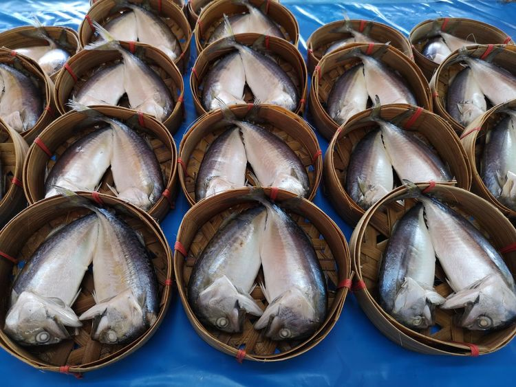 Blue Mackerel Wicker Basket EyeEm Selects Arrangement Close-up Fishing Industry For Sale Repetition Dried Fish  Fishing Equipment Fishing Net Stall Fish Market