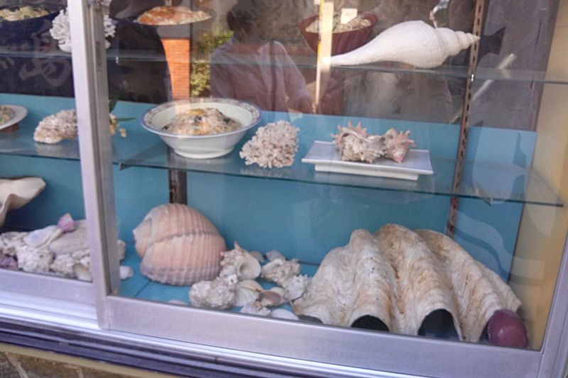 Hanging Out Taking Photos Hello World Enjoying Life Seashells Showcase Restraunt Seafood