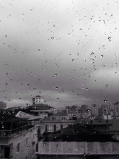 Rain Window Architecture Rainy Season Nature