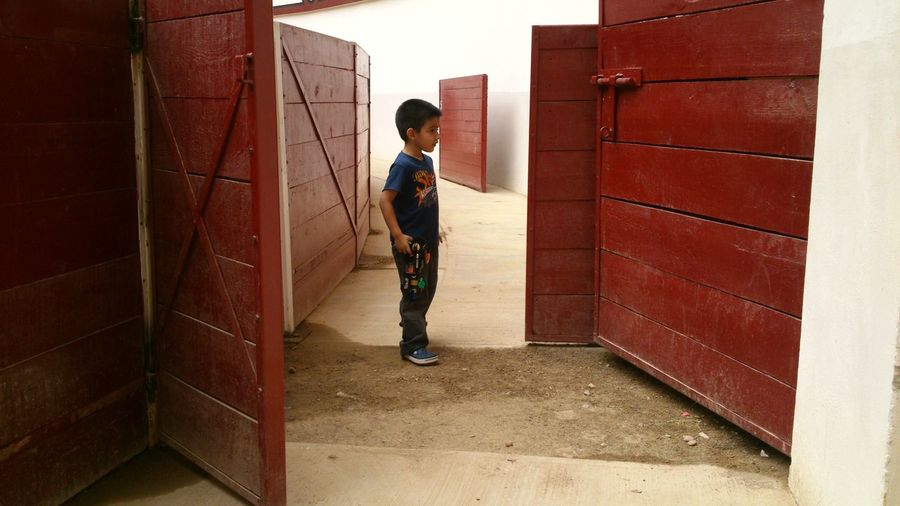 Boy Standing On Floor At Stable