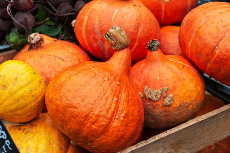 Pumpkins At Market Stall For Sale