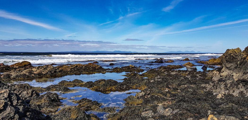 Low Tide Wave