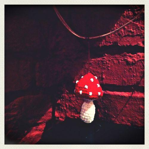 Red Mushroom Art