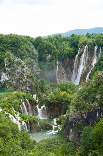 Croatia Croatia Nature Day Environmental Conservation Green Color Landscape Nature Nature No People Outdoors Plant River Scenics Social Issues Stream - Flowing Water Tranquil Scene Tranquility Travel Destinations Travel Photography Tree Water Waterfall