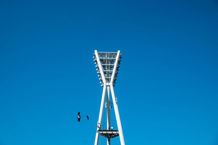 Floodlightpolewithbirds Architectural Detail Architecture Architecture_collection Birds Blue Blue Sky Cityexplorer Clear Sky Day Flood Light Pole From My Point Of View Low Angle View Minimal Minimalism Minimalist Minimalistic Minimalobsession Outdoors Simplicity Sky Tall - High Urbanphotography