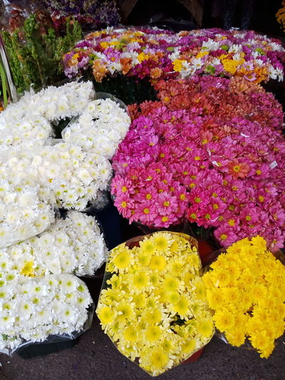 flowers Eyeem Philippines Flowers Beauty Flower No People Yellow Multi Colored Nature Day Beauty In Nature Outdoors Close-up Freshness Flower Head Fragility Flower Market Blooming